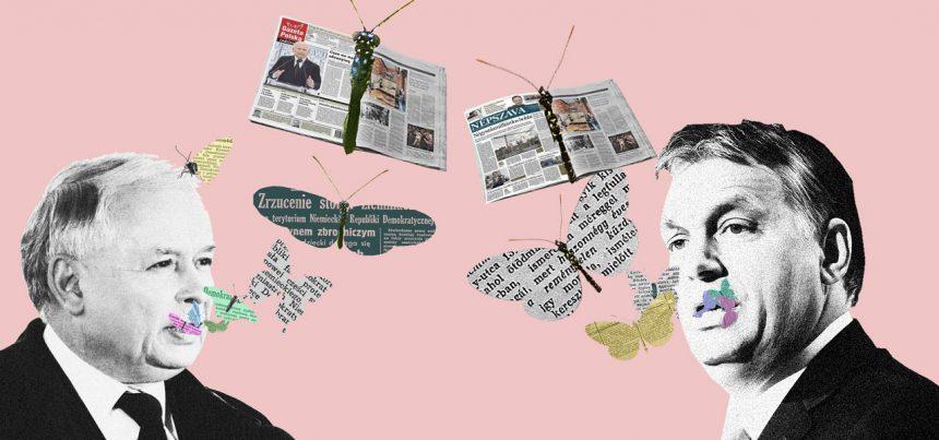 Státní reklama: Polsko-maďarské mediální know-how